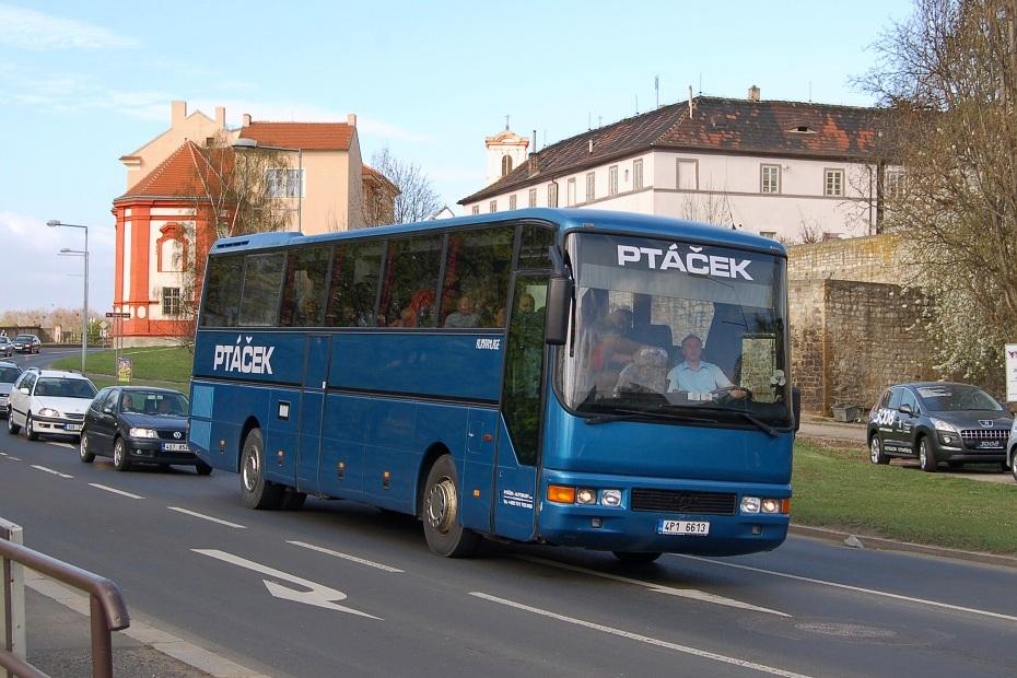 Ptáček autobusy